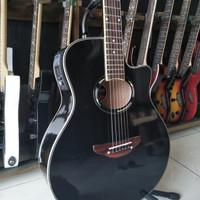 Gitar akustik elektrik APX 500 ii EQ LC TUNER Paket Lengkap