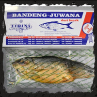 Bandeng Juwana Erlina Vacuum Kering Khas Semarang (Presto Duri Lunak)