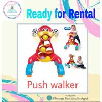 Baby Walker / Push Walker
