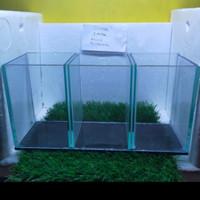 soliter sekat 3 aquarium 3 kamar aquarium mini cupang