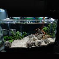 SOLD Aquarium Full Set Aquascape 40R