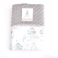 Carrol baby blanket Dinosaur baby with camera - Minky cream - grey - grey