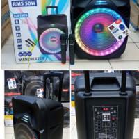 speaker portable asatron manchester 15