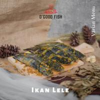 ikan frozen Lele Bumbu siap Goreng + Bakar
