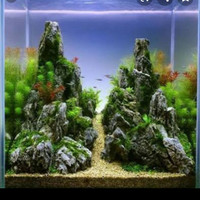 aquascape jadi tema pegunungan