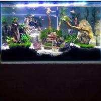 Aquascape 60 cm FULL SET