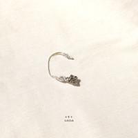 Usna Earrings - Gold