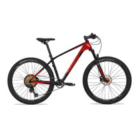Sepeda MTB PACIFIC ARMOUR DX CARBON 27,5