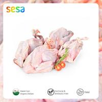 Paket Ayam Kampung Organik (isi 4 ekor 400-500 gr)