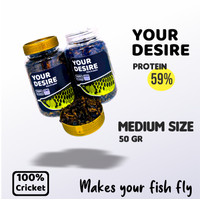 Pakan Pelet Makanan Ikan Arwana Your Desire Jangkrik 100 gr IKANESIA - Medium Size