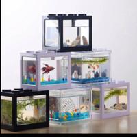 aquarium akuarium cupang lego