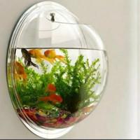 Aquarium Dinding Guppy Diameter 20cm