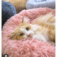 Arthacat - Pet Bed Kasur Bantal Anjing Kucing diameter donut 60cm