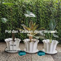 Pot tanaman bunga primadona 30 Diameter 29,5 cm