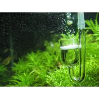 Paket CO2 - Diffuser, Check Valve, U Pipe Bahan Kaca / Glass