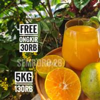 Jeruk Semboro 28 Jember Premium Quality Ori Rasa Manis Seger