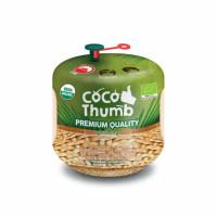 Coco Thumb Air Kelapa Muda Asli Impor Thailand