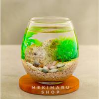 Aquarium Ikan Cupang Mini Ukuran 475ml Akuarium Kecil Kaca Hias Bulat