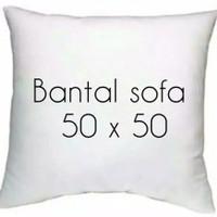 Bantal sofa 50 x 50