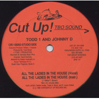 Todd 1 And Johnny D – All The Ladies In The House // Vinyl Disco 12