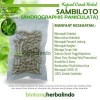 SAMBILOTO 100 Kapsul Herbal Sklerosis Diabetes Pneumonia Kencing Nanah