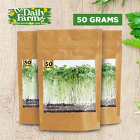 Benih Microgreens BROCCOLI SPROUT Brokoli ( 50 GRAM ) Bulk Size