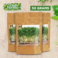 Benih Microgreens ALFALFA Sprout ( 50 GRAM ) Bulk Size
