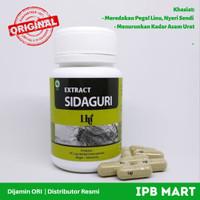 Herbal dari Pakar IPB: EXTRACT SIDAGURI unt pegal linu & asam urat