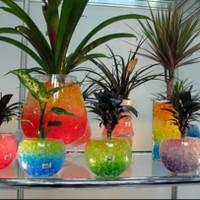 hidrogel waterbeads bola jelly media tanam hiasa pot bunga vas bunga
