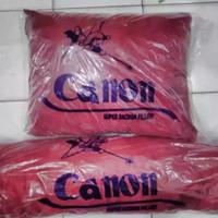 bantal tidur Canon promo (ISI 2 PCS) /bantal kepala dan guling canon !