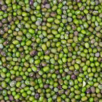 Kacang hijau SUPER 1kg / Kacang Ijo / Biji Kacang Hijau Bersih