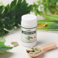 Sambiloto Kapsul Asli 100% Herbal