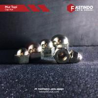 Cap Nut / Mur Topi Stainless 304 M4