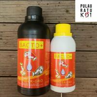 Bacto+ bakteri starter filter kolam koi dan akuarium