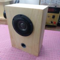 Mini Fullrange Home Audio Speaker Audible Physics Ti Speaker (2 inch)