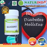 Obat Herbal Kencing Manis Diabetes Basah dan Kering Glucofit Naturindo