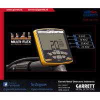 APEX Garrett - Detektor Emas - Made in USA - Promo - RESMI!