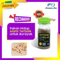 Artemia Golden Supreme Plus (20Gram)