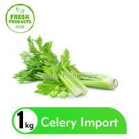 Seledri Import / Celery Stick 1kg