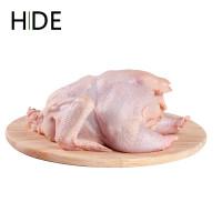 Ayam Potong Segar - Ayam Negri Ukuran 0,8 - 1 kg