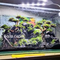 paket aquascape lengkap Thema waterfall air terjun pasir bonsai