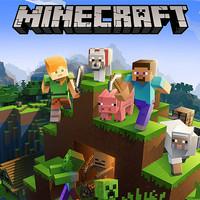 [Original Game PC] Minecraft Java Edition (Global)