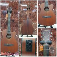 Gitar Akustik Elektrik Karl Steinhoff HS10CE HS10 CE HS-10CE Original