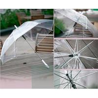 Payung Transparan Bening Termurah !!