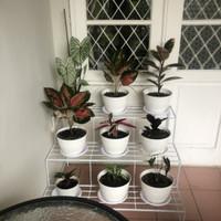 rak pot tanaman atau rak pot bunga 3 susun - gold