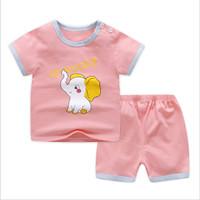 Setelan Anak Perempuan Baju Bayi Newborn Baby Gift Usia 2-6 Tahun Z74