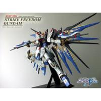 Gunpla PG 1/60 Strike Freedom Gundam Original BANDAI Perfect Grade