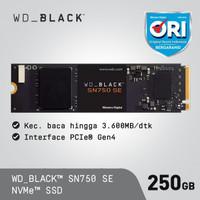 SSD WD Black SN750 SE 250GB - SSD M.2 NVMe PCIe