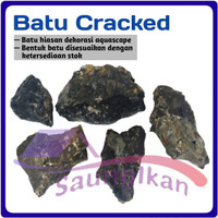 BATU CRACKED CRAKET KRAKET KRAKED Aquarium Aquascape