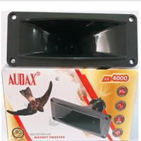 Tweeter Audax AX4000 Magnet